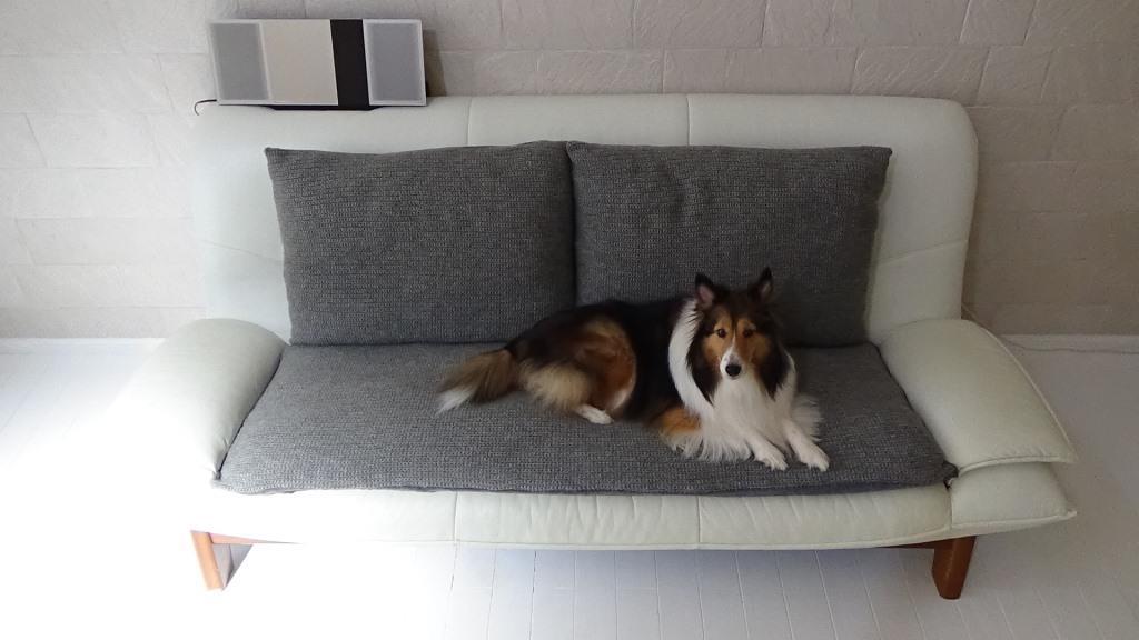 セリアの毛糸30個 & ニトリの枕でソファーをイメージチェンジしてみる