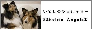 いとしのシェルティー 我が家のワンズの事を綴った姉妹ブログはこちらです